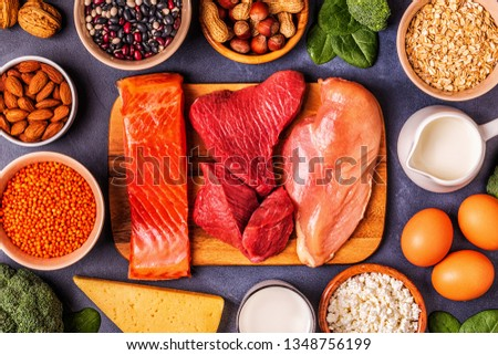 Sources of healthy protein - meat, fish, dairy products, nuts, legumes, and grains. #1348756199