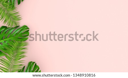 3D render of realistic palm leaves on pink background for cosmetic ad or fashion illustration. Tropical frame exotic banana palm. #1348910816