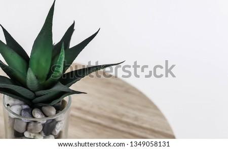Green Leaf plant background #1349058131