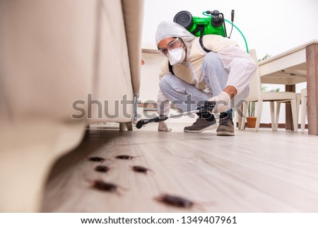 Pest control contractor working in the flat #1349407961