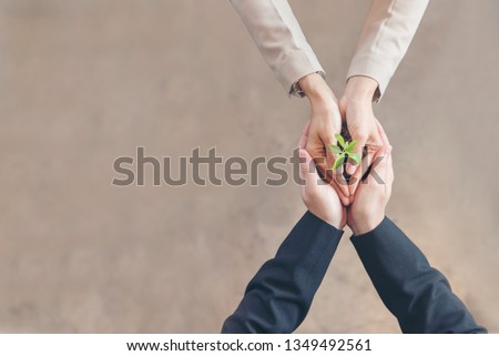 Sustainable Partner trust mission of ecosystem plant business holding green plant together symbolism of green business company with development ecology concept. Sustaining partner trust hands together Royalty-Free Stock Photo #1349492561