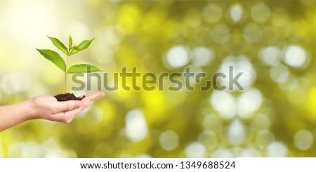 Human hands holding plants #1349688524