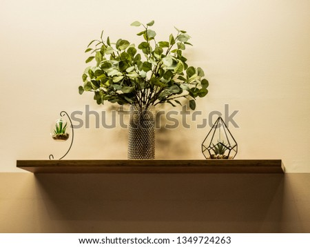 On the wall shelf there are three glass objects with green plants #1349724263