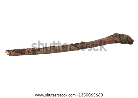 Single dry tree branch, isolated on white background. Stick tree branch from nature for design. #1350065660