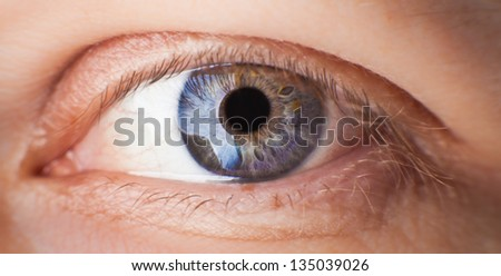 Macro image of human eye #135039026