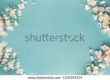 Beautiful and peaceful spring flower blossoms against a blue background.Image shot from top view.