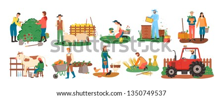 People at farm vector, farmers with cow and pigs, woman feeding chickens, couple with carrot basket, harvesting season. Bee honey and tractor cultivation #1350749537