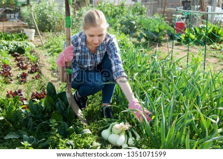 Woman farmer with onions harvest #1351071599