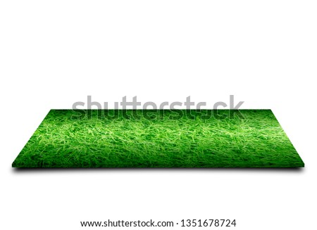 Grass carpet isolated on white background #1351678724
