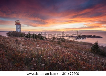 Lighthouse, wild flowers and sunset #1351697900