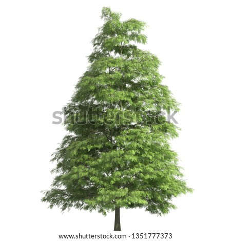 Tree 3d illustration isolated on the white background #1351777373