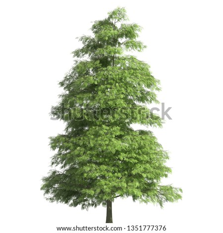 Tree 3d illustration isolated on the white background #1351777376