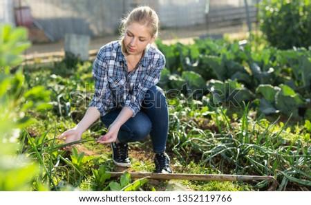 Girl gardener using  mattock at  land with green seedlings in garden outdoor #1352119766