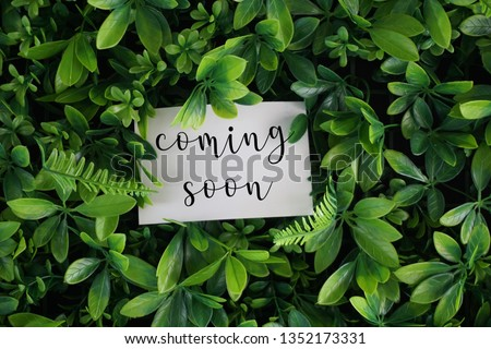 Coming soon wording on a white card over green leaves background