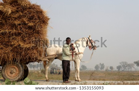 Farmer riding loaded cart on country road. #1353155093