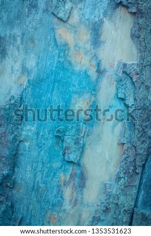 TREE CORTEX TEXTURE IN BLUE TONES #1353531623