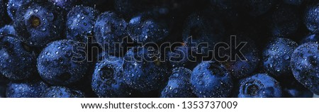 Blueberries fruit background. Water drops on ripe sweet blueberry. Collection of blue and black berries. Conceptual food image. #1353737009
