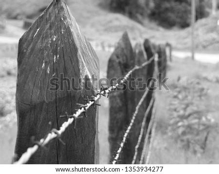 Barbed wire close up in black and white, old steel fencing wire constructed with sharp points #1353934277