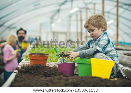 volunteering by working in greenhouse. volunteering and saving planet by growing plants. volunteering people gethering for teamwork. volunteering concept. #1353961133