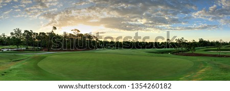 Lush green grass on a golf course with a path for a golf cart, trees and a flag #1354260182