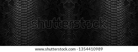 Snake skin background. Close up reptile texture. #1354410989