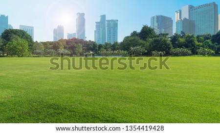 grassland green field with trees and buildings temple and grand palace in blue sky,Bangkok thailand #1354419428