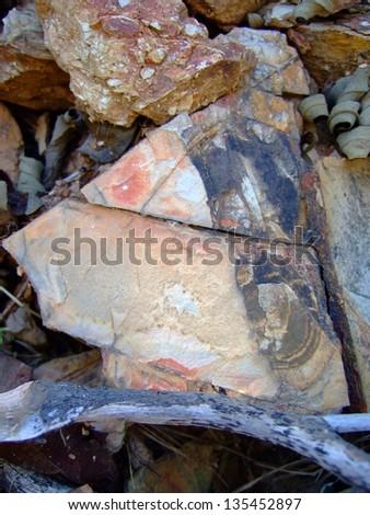 Stone Background #135452897