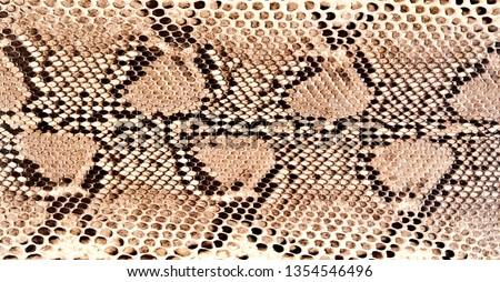 python skin reptile fashion design reptile tropical wild life animals symbol faux vegan leather  #1354546496
