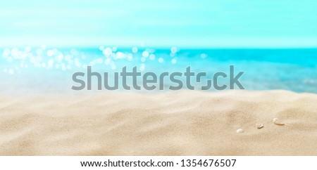 Shells on sandy beach. #1354676507