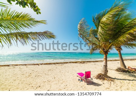 Pink beach chair under a palm tree in Raisins Clairs shore in Guadeloupe, French west indies. Lesser Antilles, Caribbean sea #1354709774