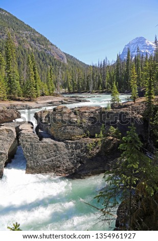 Natural bridge vertical - Yoho National Park, British Columbia, Canada #1354961927