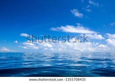 tropical beach in Sri Lanka #1355708435