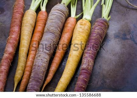 Organic rainbow carrots from the local farm. #135586688