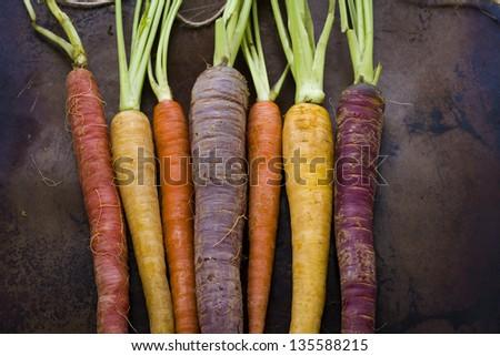 Organic rainbow carrots from the local farm. #135588215