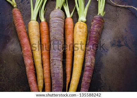 Organic rainbow carrots from the local farm. #135588242