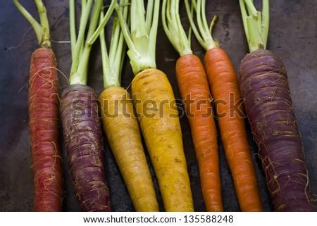 Organic rainbow carrots from the local farm. #135588248