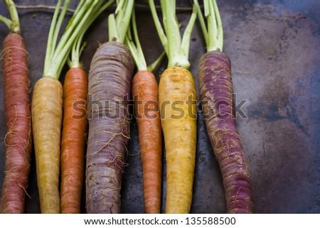 Organic rainbow carrots from the local farm. #135588500