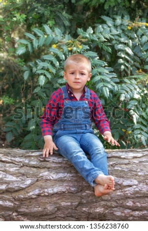 small boy sitting on the old tree trunk in the park. #1356238760