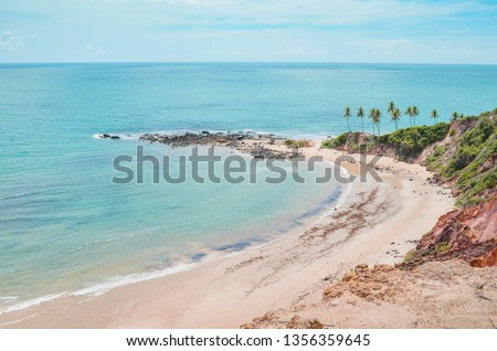 Top view of Praia de Tabatinga at Costa do Conde, Conde PB, Brazil. View of a northeastern Brazilian beach, the sea and nature around. #1356359645