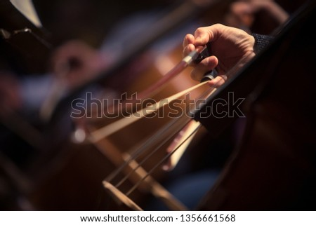 Close up shot of a man performing a cello during a concert. Royalty-Free Stock Photo #1356661568