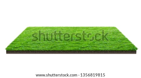 Green grass field isolated on white with clipping path. Sports field. Summer team games. Exercise and recreation place. #1356819815