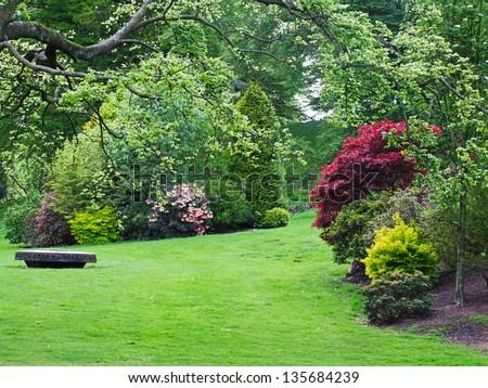 Beautiful spring garden with azalea flowers #135684239
