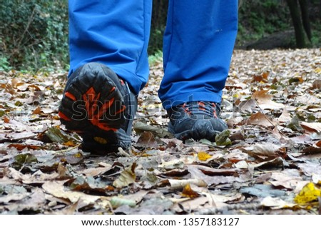 man with blue jeans walking in the forest in autumn #1357183127