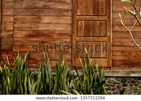 Wooden house with plants in front of. #1357312286