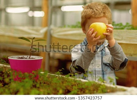 organic food. child growing organic food in greenhouse. small boy eat only organic food. organic food industry for healthy life. good eating #1357423757