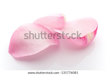 Rose petals isolated on the white background. #135776081