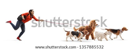 Full length shot of a female student dog walker with a maltese poodle, red poodle, beagle and basset hound dog isolated on white background #1357885532