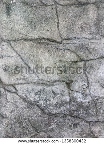 Cracked uneven putty texture. Rough and grungy background of putty #1358300432