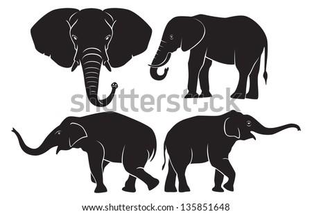 the figure shows the animal elephant