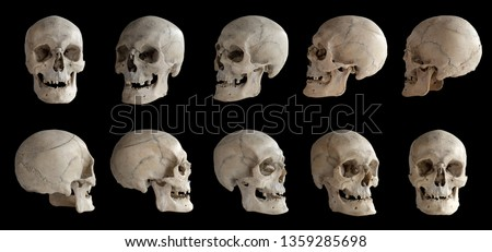 Human anatomy. Human skull. Collection of rotations of the skull. Skull at different angles. Isolated on black background.  #1359285698